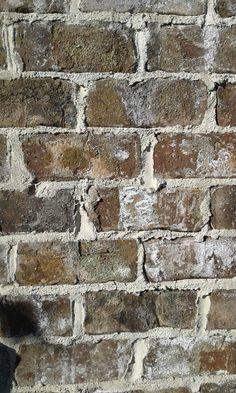 Cherokee Brick Old Savannah Palmaccio In 2019 Pinterest
