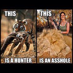 Hunter-asshole.