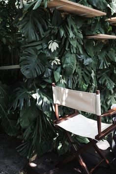 leaves - dreaming of a lush green outdoor space and a directors chair