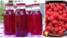 Z 1 hrnčeka malín až 1,5 litra domáceho sirupu: Žiada chémia, éčka a netreba ho ani sterilizovať! Bottles And Jars, Home Recipes, Preserves, Gardening Tips, Lemonade, Raspberry, Food And Drink, Smoothie, Herbs