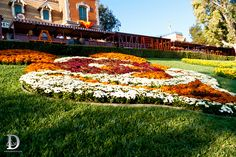 Halloween Time, Mickey Disneyland Floral