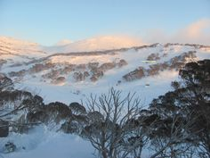 Oldina Ski Club Lodge Perisher = 14 beds (twin rooms all with en-suites), cooked breakfast & 3 course dinner cooked by our Winter Lodge Manager.  Non-Members welcome. Visit our web site:  www.oldinaperisher.com.au    To book a bed EMAIL bookings@oldinaperisher.com.au or  Ph 02 - 9481 9221 Why not join our club?   Membership information and form  at:  www.oldinaperisher.com.au/members.html Winter Lodge, Ski Club, Ph, Skiing, Beds, Twin, Rooms, River, Breakfast