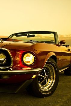 I don't know a man alive that wouldn't take a Mustang convertible, if offered one.  They are just cool cars.  ~~  Houston Foodlovers Book Club