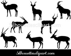 Antelope Vector Graphics
