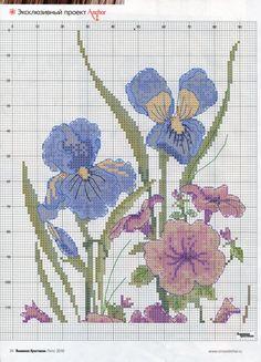Gallery.ru / Фото #2 - полевые цветы - irisha-ira