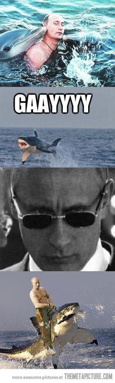 Vladimir Putin...I'll ride him riding the shark.