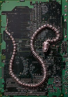 Circuit Board Fossils, Paintings and Other Found Object Sculptures by Peter McFarlane