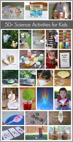Over 50 Science Activities for Kids! (Including physics, light, plants, and… Science Activities For Kids, Stem Science, Preschool Science, Science Experiments Kids, Science Classroom, Science Fair, Teaching Science, Stem Activities, Science Projects