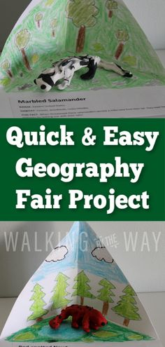 Quick and Easy Geography Fair Project - Walking by the Way Teaching Geography, Teaching History, Homeschool Curriculum, Homeschooling, Fair Projects, Early Childhood Education, Walking By, Social Studies, Fun Facts