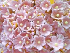 Beautiful Forget Me Not Blushing Pink Flower Bouquet