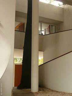 Le Corbusier / Casa Curuchet