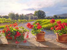 """Gerani by June Carey LIMITED EDITION CANVAS Image size: 24""""w x 18""""h. Limited Edition of: 45"""