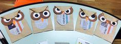Brown Owl~ | minirelli