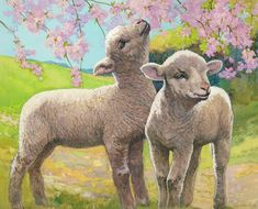 Two Lambs Eating Blossom Painting by Van der Syde