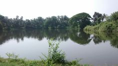 beautiful lake near village temple..