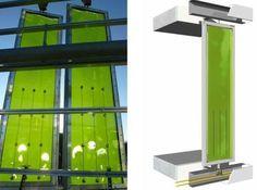Edificio #Sostenible Alimentado Por Algas