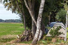 Natuurkampeerterrein Wildemansheerd Men komt duidelijk voor de natuur en de rust. Trunks, Plants, Drift Wood, Tree Trunks, Plant, Planets