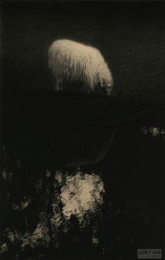 Masao Yamamoto. Chuan
