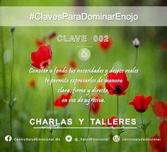 #Enojo #Ira #DominarEnojo #Dominio #Autodominio #SaludEmocional  #CentroSaludEmocional #Clave #002