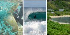 Ocean Girl Project Beach Clean Up April 26, 8-11, Baby Makapu'u #beachcleanup #surfing #swimming