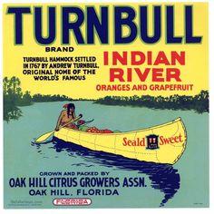 TURNBULL Vintage Florida Citrus Crate Label