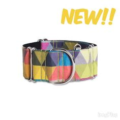 New Martingale Dog collar Trivial! Come on visit us!