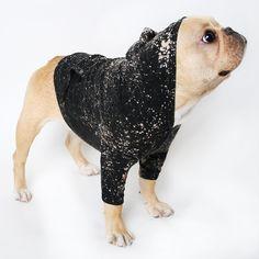 Deep Space Dog Hoodie Black Shirt Tank by BurgerAndFriends on Etsy Rat Race, Baby French Bulldog, Les Rats, Reborn, Dog Hoodie, Pet Clothes, Mans Best Friend, Black Hoodie, Puppy Love