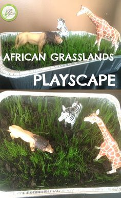 Make your own African playscape with this experiment! http://www.greenkidcrafts.com/african-grasslands/
