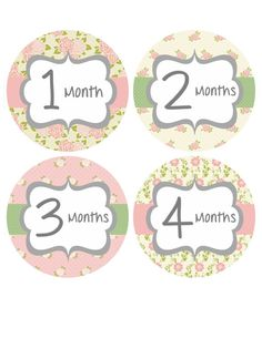 Monthly+Onesie+Stickers+Baby+Month+by+BumpAndBeyondDesigns+on+Etsy,+$10.00