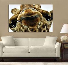 Giraffe Looking At You