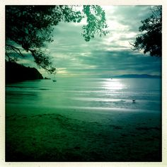 Sunday morning jog. Oneroa Beach, Waiheke Island. #relaxing