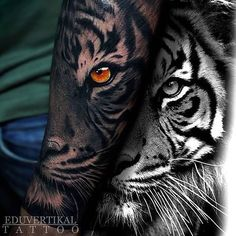 Tiger With Yellow Eye Forearm Tattoo