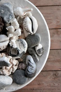 stones & shells, love this for the bathroom