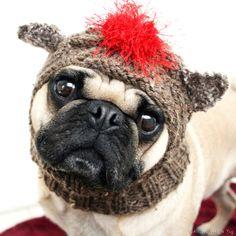 Sock Monkey Dog Hat by AllYouNeedIsPugShop on Etsy