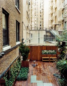Patio/garden in an Upper West Side co-op in NYC