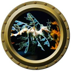 The Sea Dragon Porthole Vinyl Wall Decal by WilsonGraphics on Etsy, $13.00