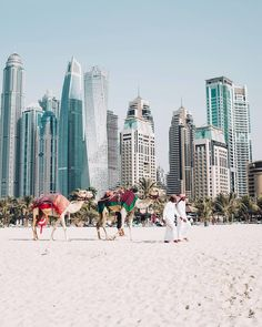 Going to dubai? need travel inspiration? check out our most popular destinations and things to do in dubai. discover the world for less and save up to Dubai City, Dubai Uae, Dubai Travel, Luxury Travel, Luxury Hotels, Strand Thailand, Voyage Dubai, Dubai Design Week, Photos Black And White