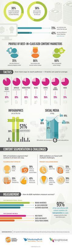 B2B content marketing statistics for 2014 continued.   www.annmariebutler.com