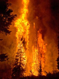 The Springs Fire, Banks-Garden Valley, Idaho, Boise National Forest, August 13, 2012; burning embers aloft