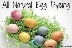 Natural Egg Dyeing - http://www.littleblogonthehomestead.com/natural-egg-dye/