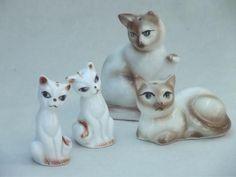 china cat salt & pepper shakers