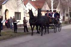 Vinkovci, ulica Josipa kozarca, vožnja fijakerom (24)