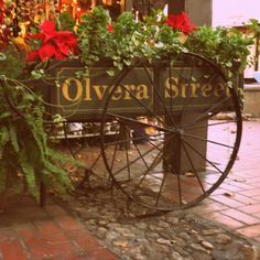 Olvera Street - used to go here with my dad when I was a little girl.