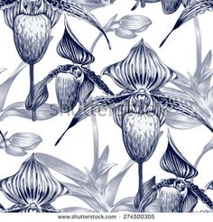 Seamless vector background. Pattern with exotic tropical flowers. Orchid. Black and white. Design for wallpaper, upholstery fabrics, textiles, paper, packaging.