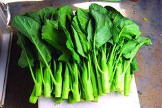 Kailan Kichi - Chinesische Brokkoli - Broccoli - 20+ Samen - KNACKFRISCH!