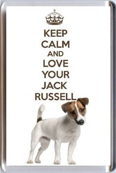 A fridge magnet with a picture of a Jack Russell Terrier Dog with the wording KEEP CALM AND LOVE YOUR JACK RUSSELL from our unique KEEP CALM and CARRY ON gift range. An original Birthday or Christmas stocking filler gift idea for a dog lover!, http://www.amazon.com/dp/B00BZRZJIK/ref=cm_sw_r_pi_awdm_25kWtb17WTWEK