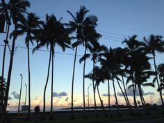 ヒロの夜景 Hawaii, Island, Beach, Water, Outdoor, Gripe Water, Outdoors, The Beach, Islands