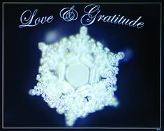 Love and Gratitude Poster | Dr. Masaru Emoto | Beyond Words