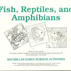 Fish Reptiles And Amphibians MacMillan Early Science Activities Work Sheets New #MacMillan #WorkSheets