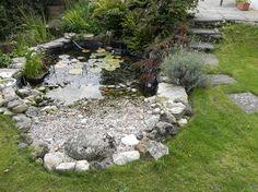 Backyard small diy water features ideas for 2019 Garden Pond Design, Bog Garden, Rain Garden, Landscape Design, Diy Water Feature, Backyard Water Feature, Ponds Backyard, Backyard Waterfalls, Koi Ponds